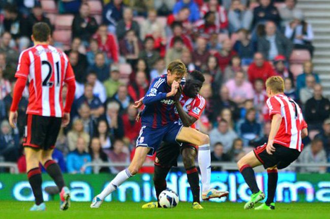 Prediksi Bola Sunderland vs Stoke City 28 November 2015
